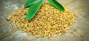 Methi-Seeds - Rejuvenate