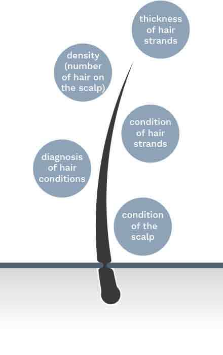 Diagnostic Tests for Hair Loss
