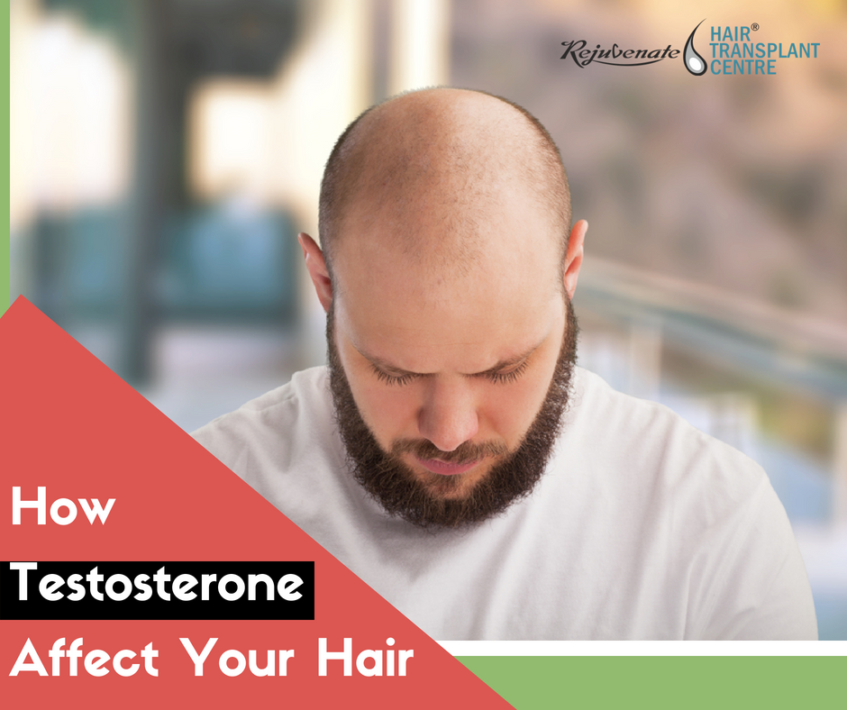 testosterone affect your hair